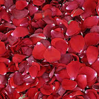 plantvatika offers dry rose petals online in Hathras