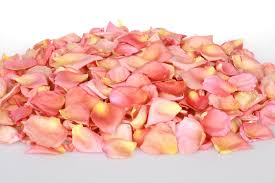 Dry Rose Petals online from PLANTVATIKA  in Sonbhadra
