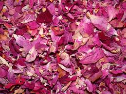 Dry Rose Petals online from PLANTVATIKA   in Saharanpur